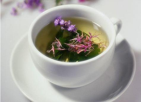 иван чай чашечка